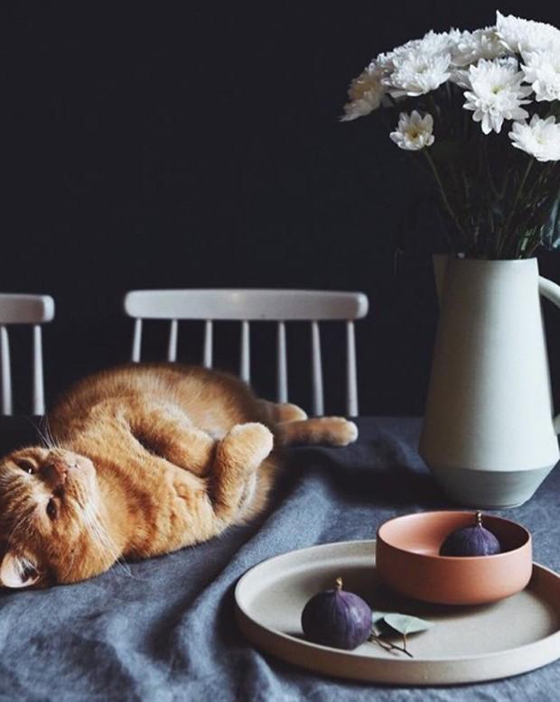 8 perfis no Instagram para quem busca inspiração de décor (Foto: Reprodução Instagram)