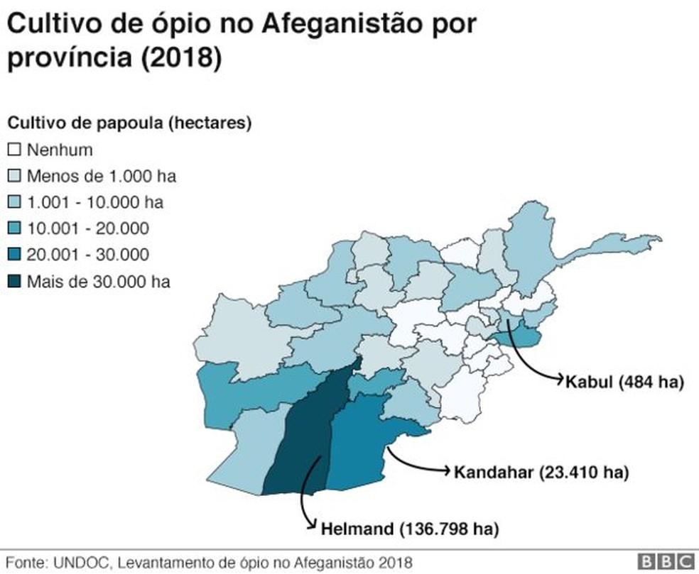 Cultivo de ópio no Afeganistão por província (2018) — Foto: BBC