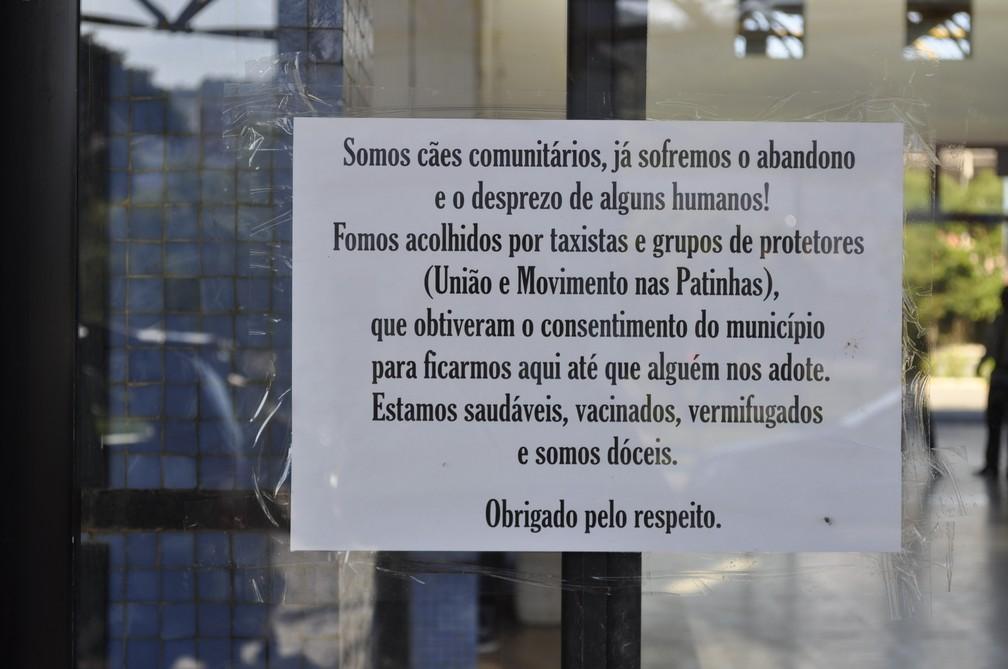Placa colocada por taxistas e pelas ONGs pede respeito aos animais — Foto: Camilla Resende/G1