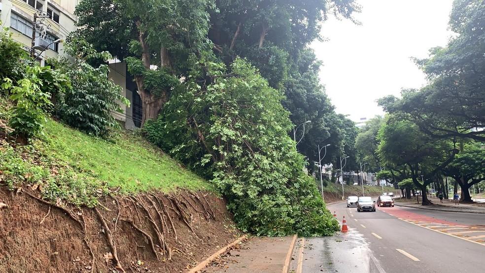 Apesar do bloqueio da faixa, por volta de 8h, o trânsito estava moderado na região.  — Foto: Victor Silveira / TV Bahia