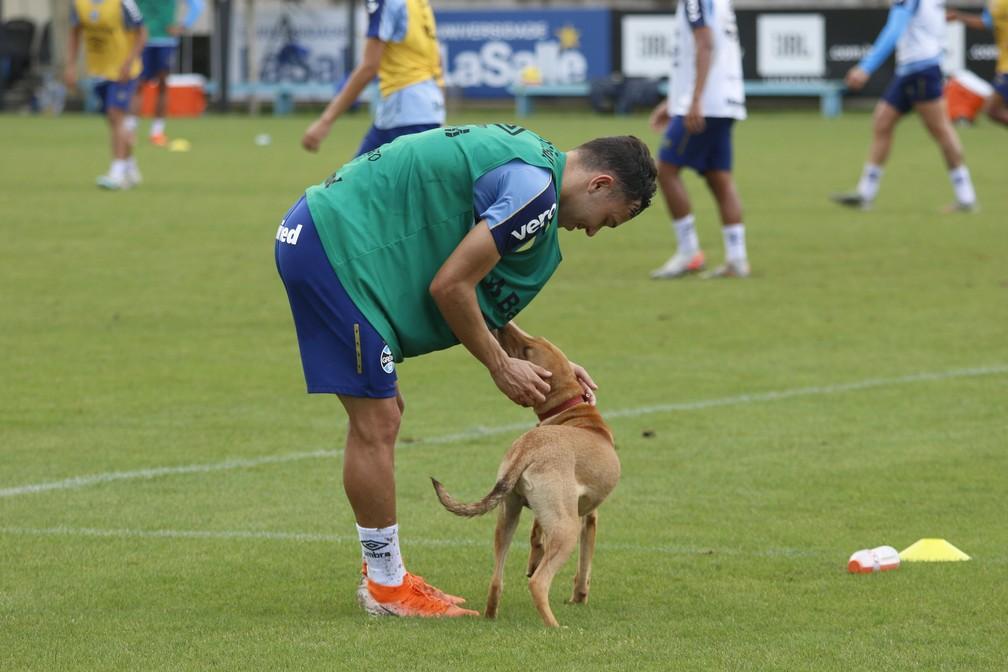 Pepê brinca com cachorro durante treino do Grêmio — Foto: Eduardo Moura