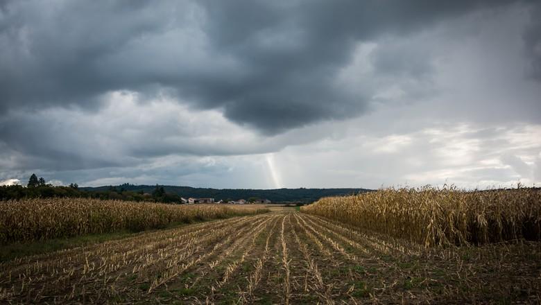 milho plantação chuva nuvens tempestade lavoura  (Foto: Getty Images)