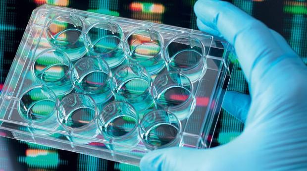 A cura do câncer é um dos objetivos de biotechs brasileiras (Foto: Divulgação)