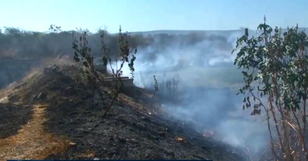 Queimada atingiu área de seis hectares em Barreiras (Foto: Reprodução/TV Oeste)