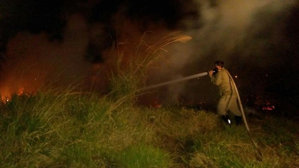 Incêndios em Valentim Gentil  (Foto: Divulgação/Defesa Civil de Valentim Gentil)