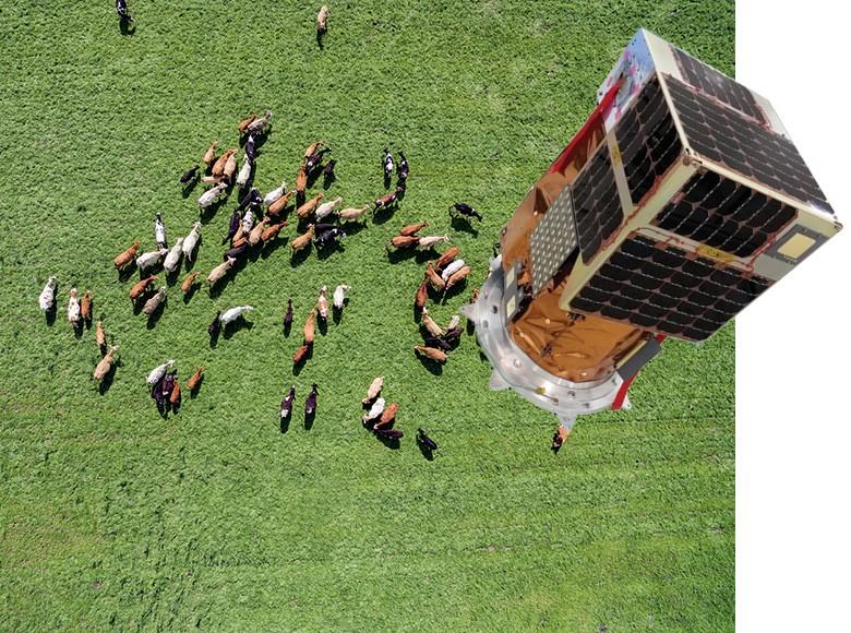 Satélites de alta resolução permitem dimensionar o rebanho e acompanhar o desenvolvimento das lavouras (Foto: Thinkstock)