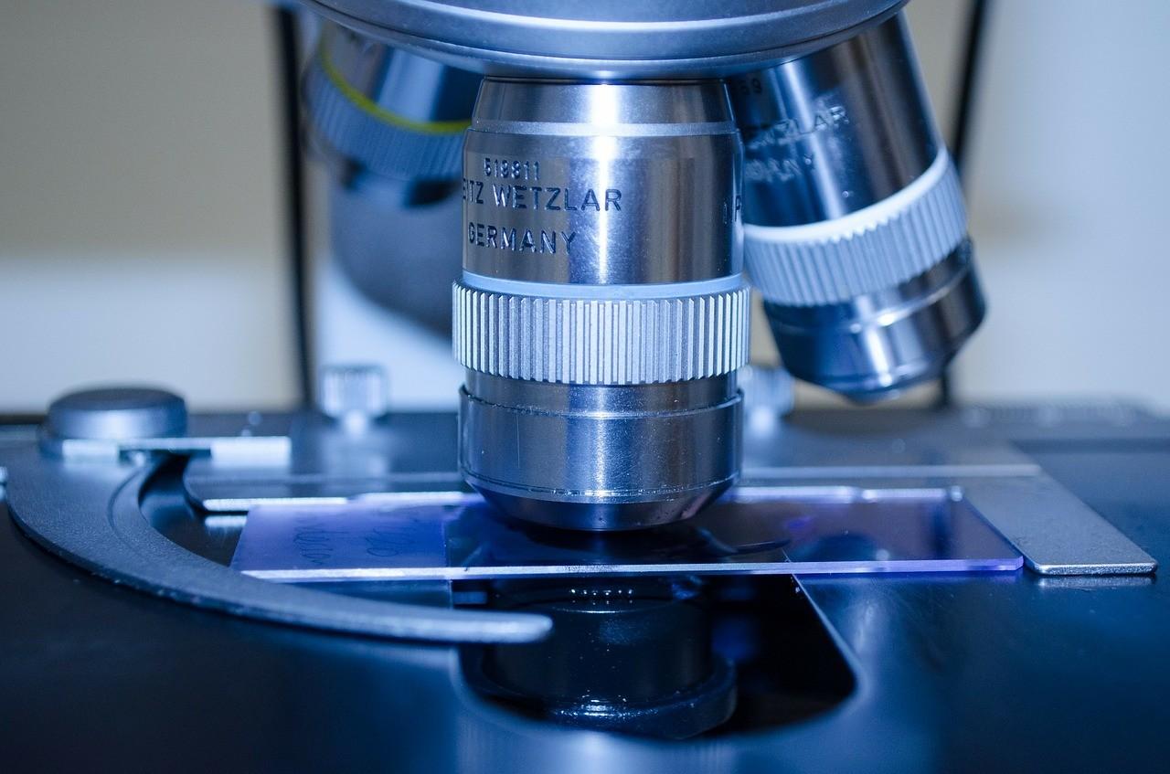 Os controvertidos testes com vírus letais que estão sendo conduzidos nos EUA