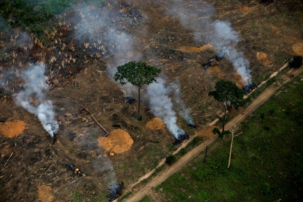 Vista áerea mostra área desmatada da Amazônia próxima a Porto Velho, em Rondônia, em setembro de 2019. — Foto: Bruno Kelly/Reuters