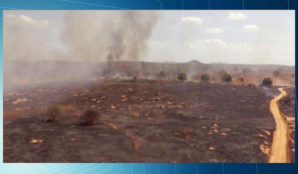 Incêndio em Boa Ventura, no Sertão da Paraíba (Foto: Reprodução/TV Paraíba)