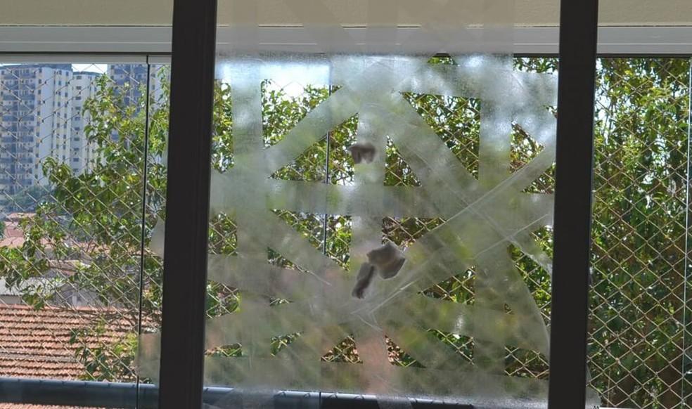 Brincadeira da bola na teia — Foto: tempojunto.com