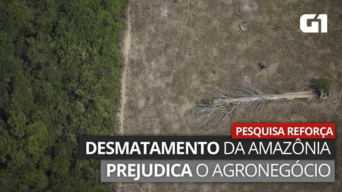Bolsonaro tem recordes de destruição do meio ambiente, mas usa dados para enaltecer seu governo; entenda thumbnail