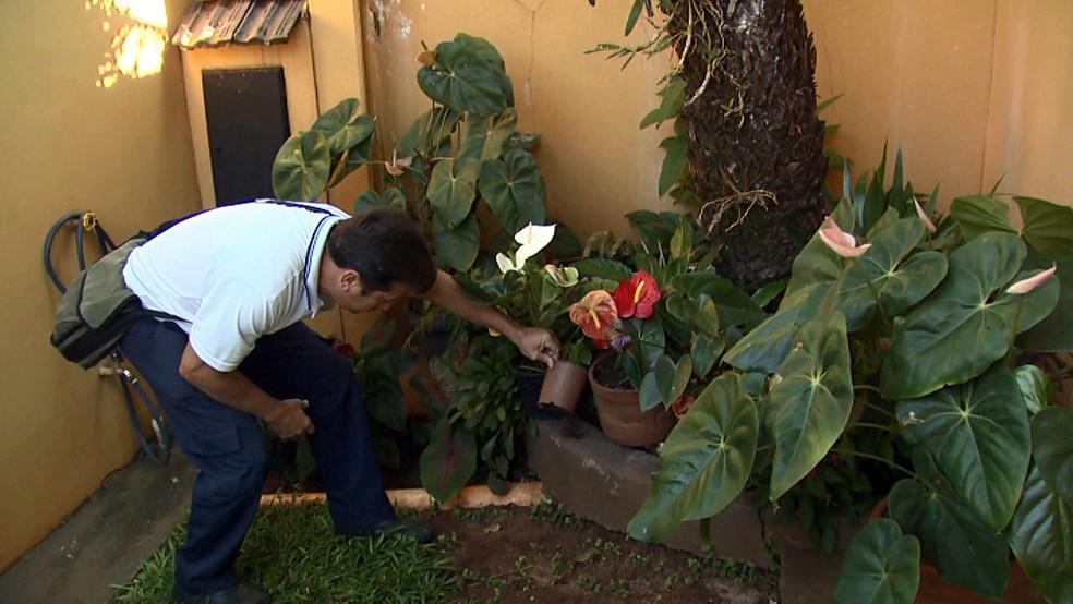 Agentes de saúde durante vistorias em casas de Santa Rita do Passa Quatro (Foto: Marlon Tavoni/EPTV)