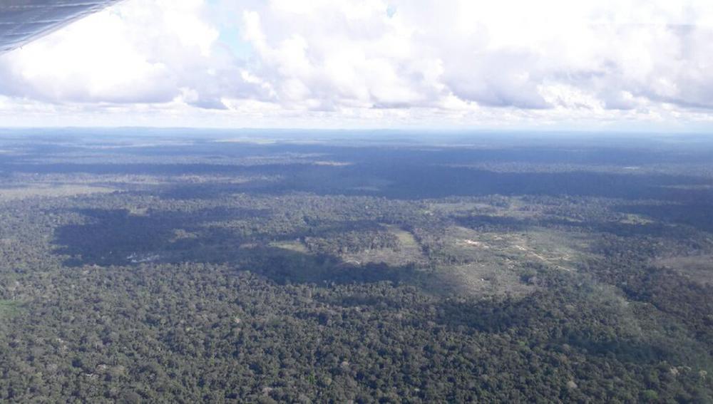 Área chamada de Taquaruçu do Norte fica a 250 km de Colniza e é de difícil acesso (Foto: Reprodução/TVCA)