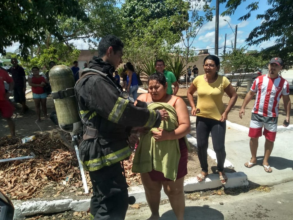 Gato resgatado de casa em chamas foi entregue à responsável e levado para avaliação de um veterinário, em Maceió — Foto: Carolina Sanches/G1