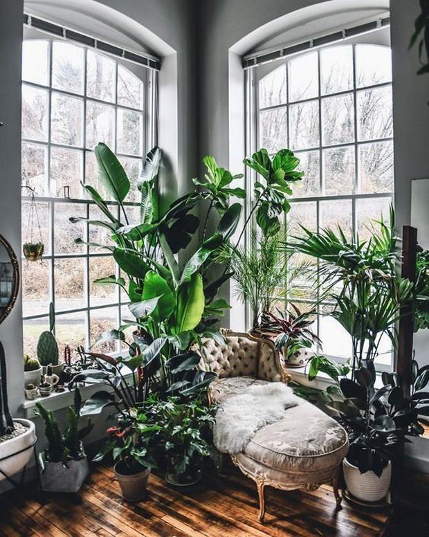 Décor do dia: urban jungle no cantinho de leitura (Foto: Reprodução)