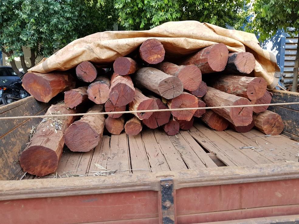 Segundo os índios, madeira seria entregue em fazenda da região (Foto: Polícia Federal/Divulgação)
