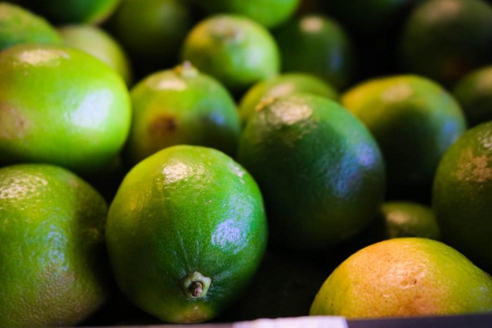 O limão tahiti vendido em Mato Grosso está sendo trazido de São Paulo — Foto: Lucas Diego- Assessoria Seaf