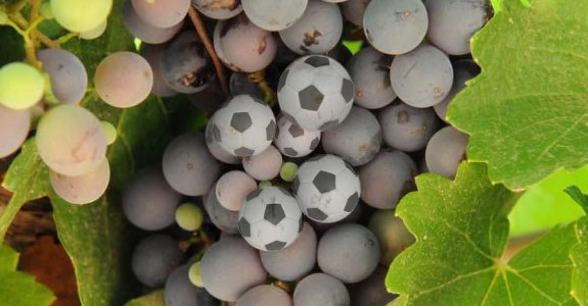 Vinho combina com Copa (Foto: Reprodução)