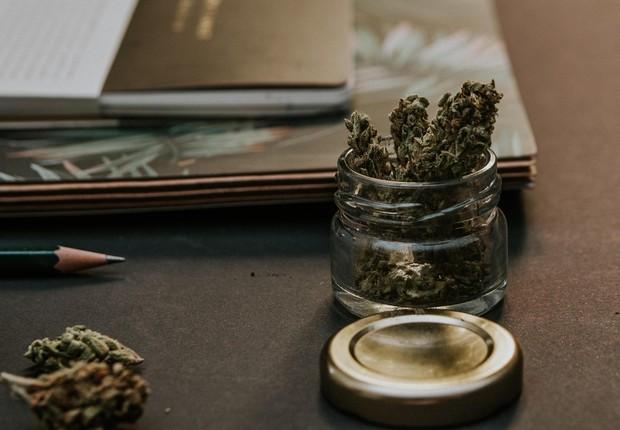 Maconha: legalização no Canadá causou corrida por investimentos (Foto: Pexels)
