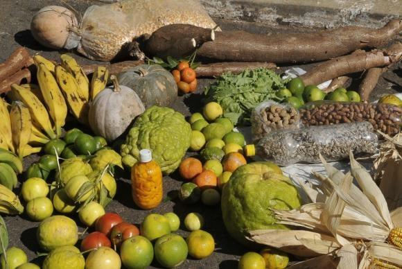 agricultura_familiar_alimentos (Foto: Antonio Cruz/Agência Brasil)