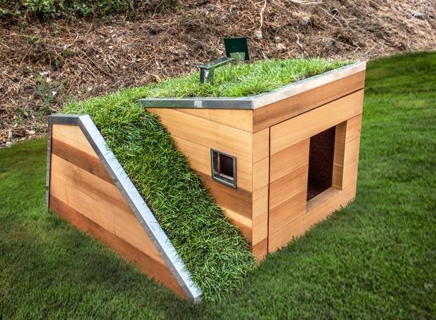 Casinha de cachorro tem teto verde e torneira com sensor de movimento