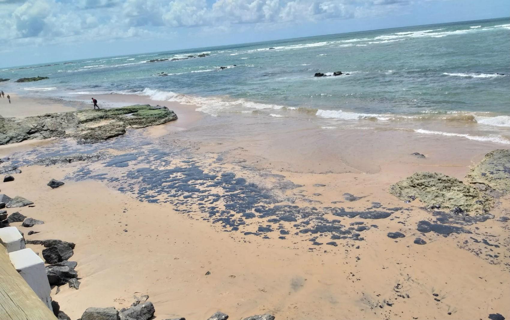 Mais de 80 toneladas de óleo foram recolhidas das praias de Salvador nos últimos três dias  - Notícias - Plantão Diário
