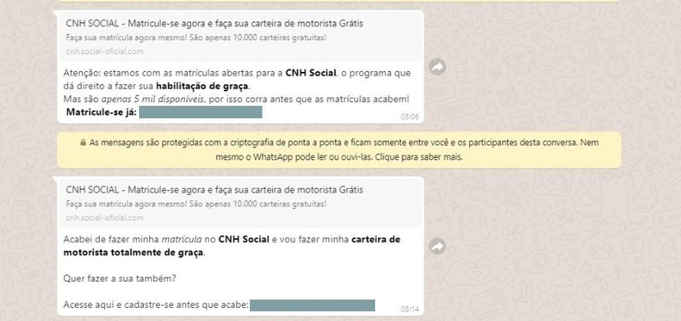 CNH popular: informação falsa sobre documento gratuito circula em redes sociais, alerta Detran