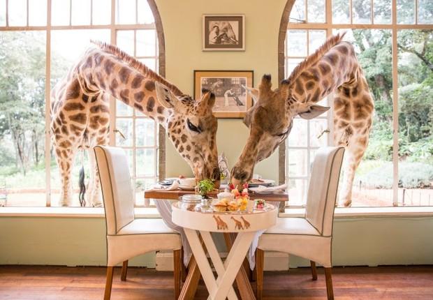 Giraffe Manor, no Quênia (Foto: Divulgação)
