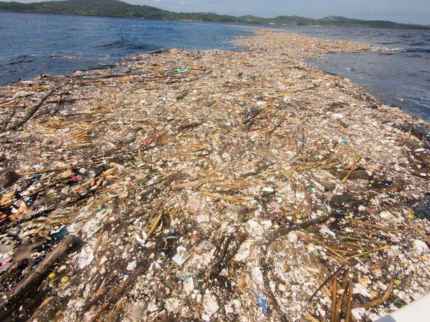 O 'mar de plástico' no litoral de Honduras tem 8,2km de extensão