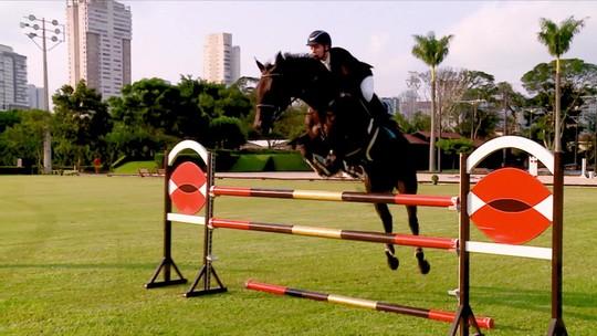 Hidroginástica, acupuntura, esteira e até alongamento: veja preparação de um cavalo atleta