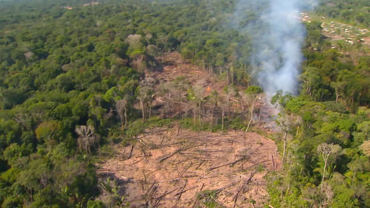 Inpe cruza dados de incêndios com desmatamento