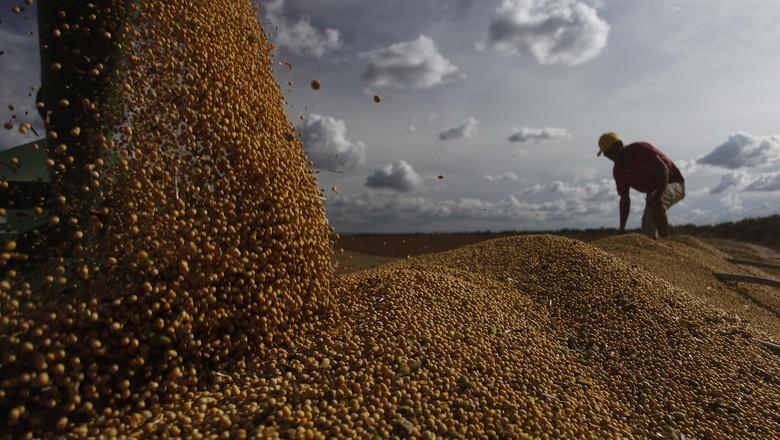 colheita-soja-luis-eduardo-magalhaes-bahia (Foto: Jonathan Campos/Ag. Gazeta do Povo)