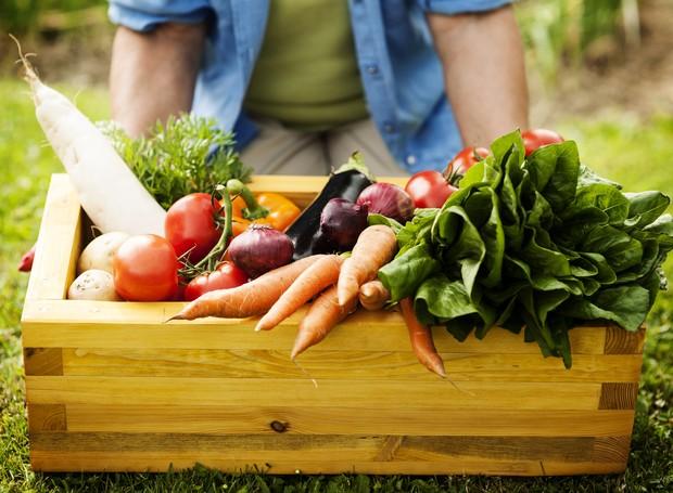 Cultivar os próprios alimentos pode ser uma maneira de ter uma alimentação mais saudável e, assim, fortalecer a imunidade (Foto: Freepik / Creative Commons)
