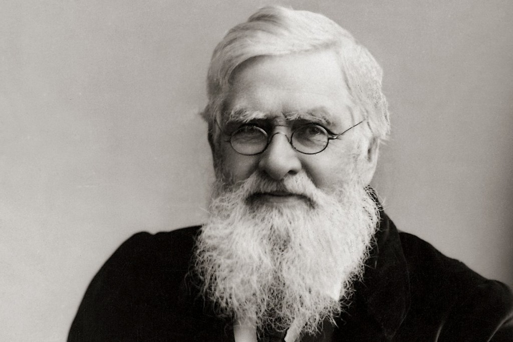 Quem foi Alfred Wallace, um dos pais da seleção natural - Revista ...