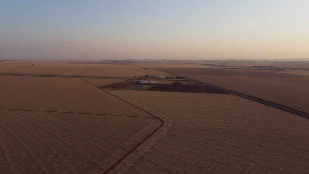 Forte estiagem preocupa produtores rurais do norte do MS — Foto: Silas Ismael/Foto