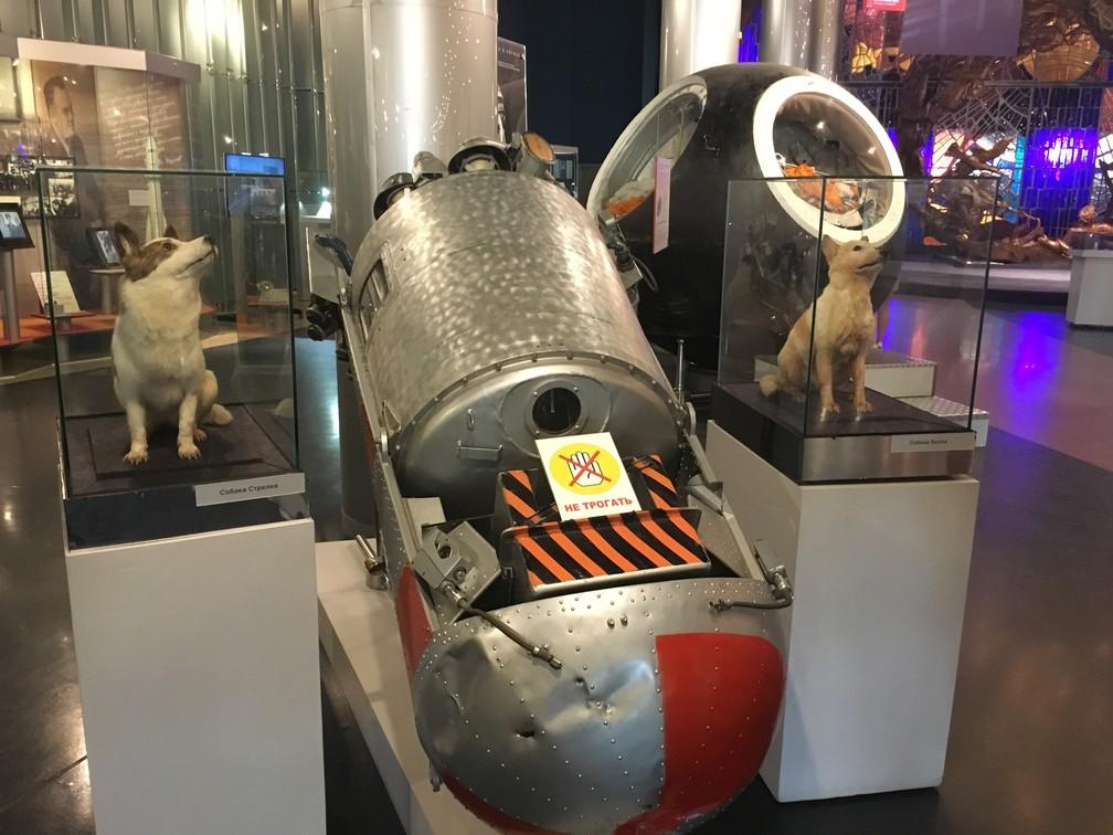 Cadelas Belka e Strelka têm esculturas próprias no museu. (Foto: G1/ Adriane Schultz)