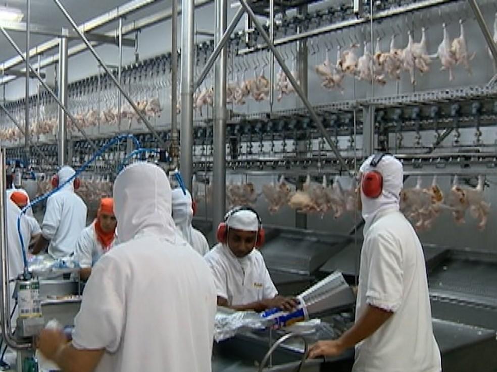 Rússa é quarto maior mercado da carne brasileira (Foto: Reprodução/TV Fronteira)