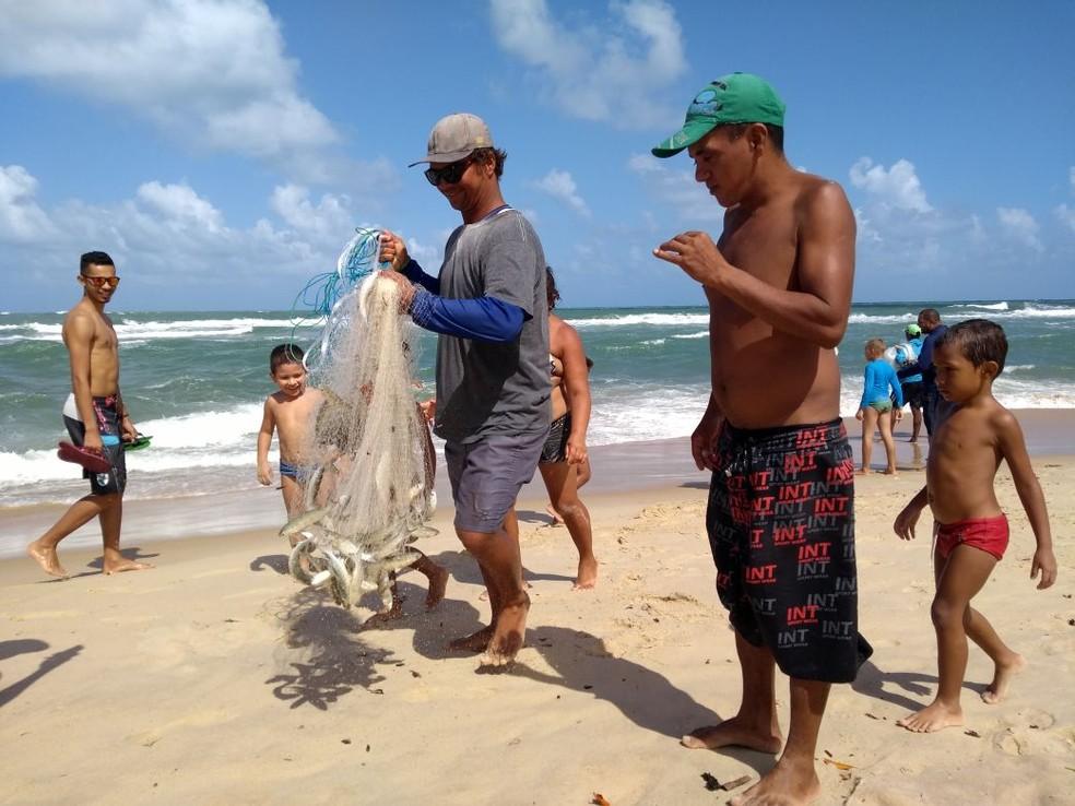 Pescador recolhe cardume pescado nas águas de Sibaúma, RN  (Foto: Lucas Cortez )