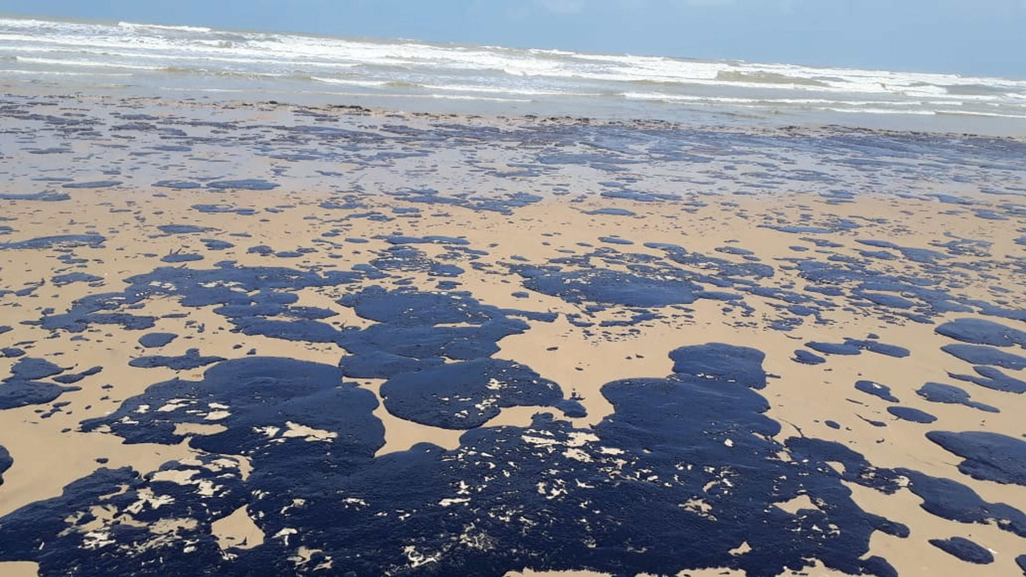 Manchas de óleo em praia de Sergipe (Foto: Reprodução Ibama)