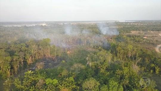 Noruega suspende repasses de R$ 133 milhões para o Fundo Amazônia