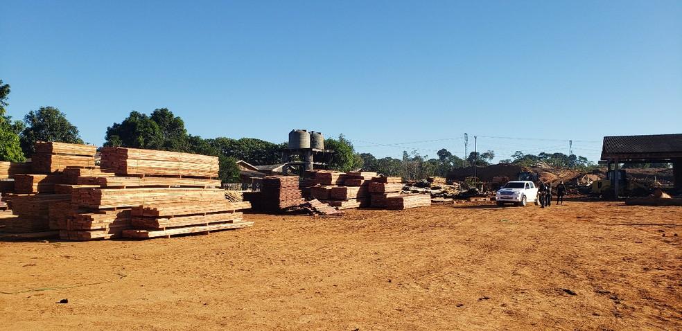 Exército e Polícia Federal atuam em Rondônia para combater desmatamento.  — Foto: Divulgação/Exército Brasileiro
