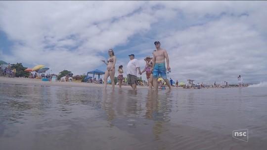 Praia em SC tem mais de 450 casos de ataques de águas-vivas em uma semana