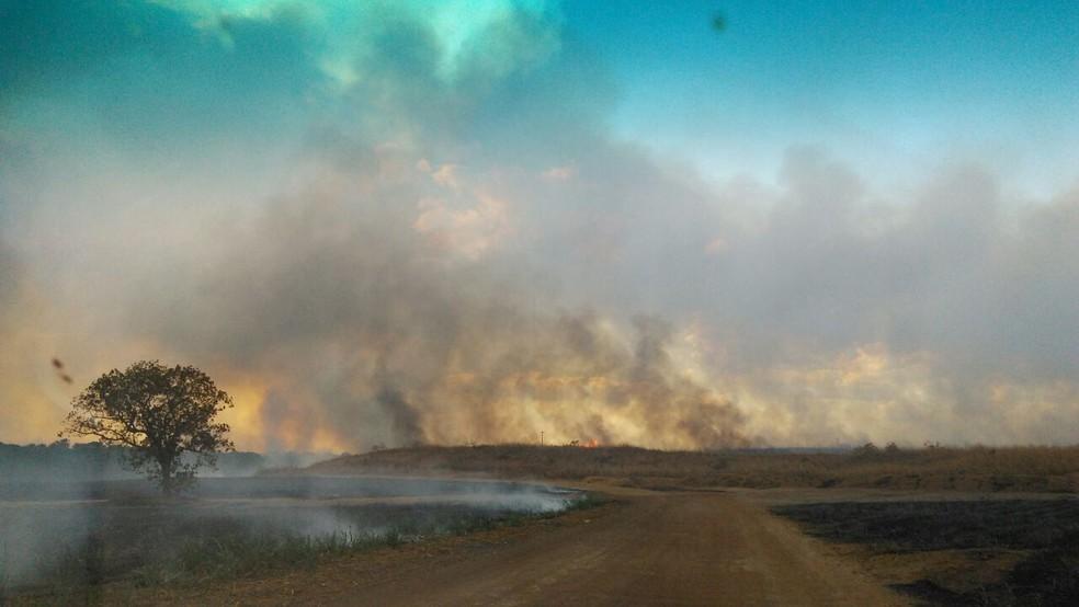 Fazendas foram atingidas pelas chamas (Foto: Divulgação)