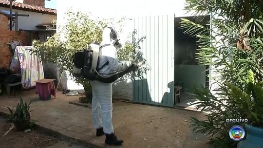 Prefeitura faz mutirão para eliminar criadouros de dengue em Andradina