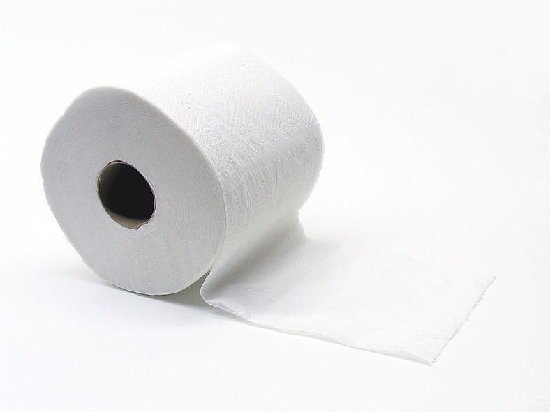 Recorde quebrado graças a um papel higiênico (Foto: Wikimedia Commons)