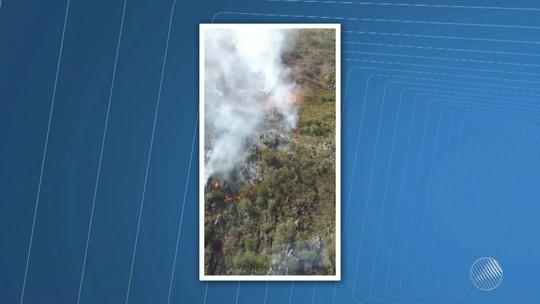 Área destruída por fogo já equivale a mais de 350 campos de futebol na BA