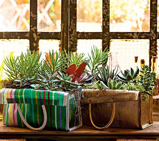 """Claudia Regina, do Ateliê La Calle Florida, adora criar jardins que misturam suculentas e utensílios domésticos, como a sacola. """"Plantei as espécies direto, que, por ser de tecido furadinho, é bem drenável"""", conta (Foto: Edu Castello/Casa e Jardim)"""