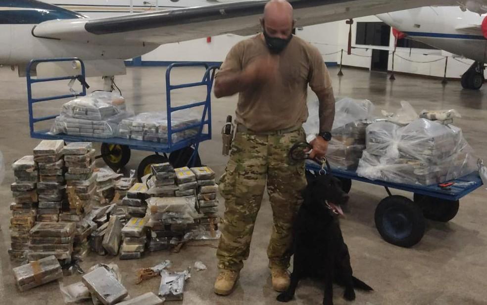 Meia tonelada de cocaína é encontrada em avião no Aeroporto Internacional de Salvador — Foto: Divulgação/SSP-BA