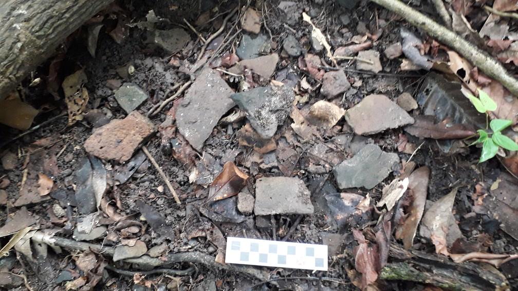 Resquícios de materiais foram encontrados nas ilhas artificiais identificadas na Amazônia.  — Foto: Márcio Amaral/Instituto Mamirauá