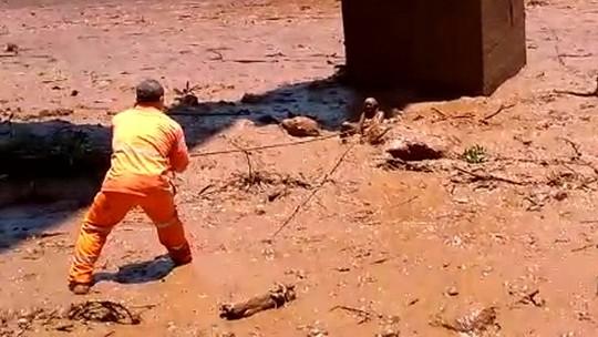 Funcionário da Vale conta como salvou mulher de onda de lama